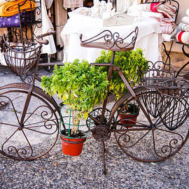 William Krumpelman - Bicycle Planter