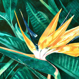 Bird Of Paradise by Pauline Walsh Jacobson