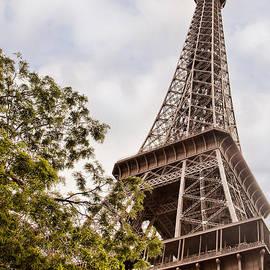 Eiffel Tower by Lindley Johnson
