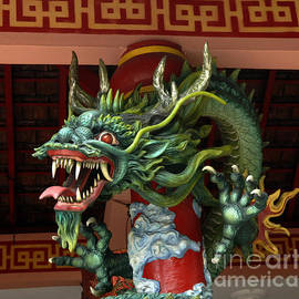 Enter The Dragon by Bob Christopher