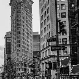 Georgina Gomez - Flatiron New York Landscape