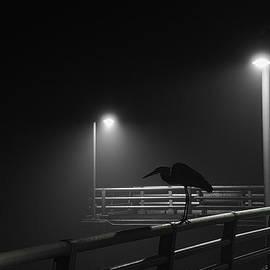 Foggy Morning by Russ Burch