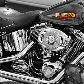 Laura Fasulo - Harley Davidson