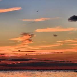 Dan Sproul - Lake Erie Sunset