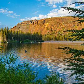 Lynn Bauer - Lake Mary Golden Hour