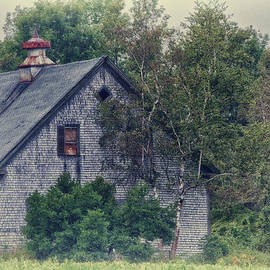 Richard Bean - Maine Countryside