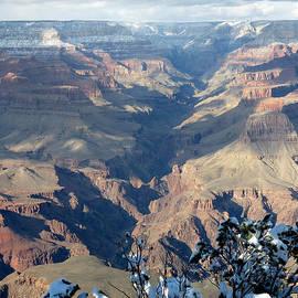 Laurel Powell - Majestic Grand Canyon