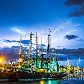 Masts Electrified by Stephen Whalen