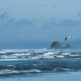 Misty Copalis Rock and Gulls by Allan Van Gasbeck