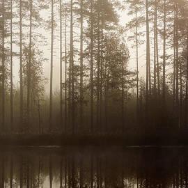 Jouko Lehto - Morning at Pitkajarvi