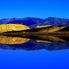 JOHN LANGDON - Mustard Mountains