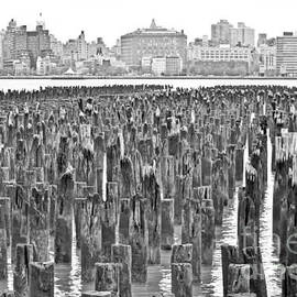 PatriZio M Busnel - Old piers