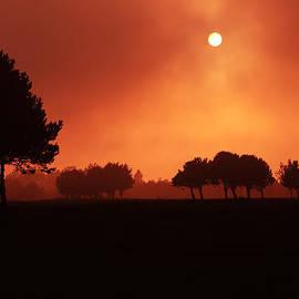 Red Mist by Aidan Moran