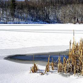 Thomas R Fletcher - Snow on Lake