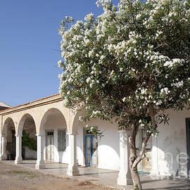 Ros Drinkwater - St Andrews Monastery Cyprus