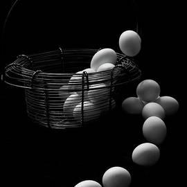 The Great Eggscape by Jim Garrison