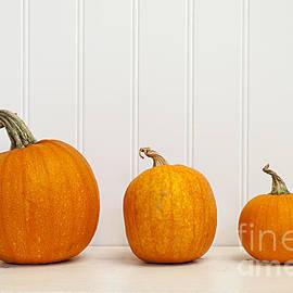 Elena Elisseeva - Three pumpkins