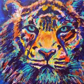 Turquoise Eyes Tiger by Jennifer Lombardo