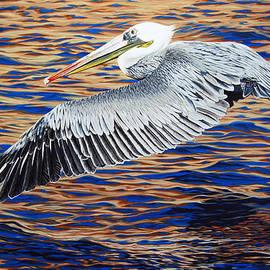 Wind Surfer by Cheryl Fecht