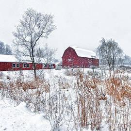 Claudia Kuhn - Winter