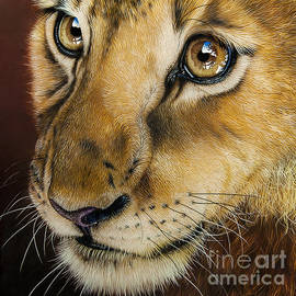 Young Lion by Jurek Zamoyski