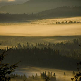 Foggy Morning at Priest Lake  -  141010A-021 by Albert Seger