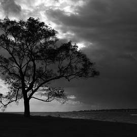 Approaching storm by David Freuthal