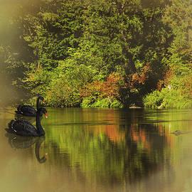 Diane Schuster - Autumn Dream