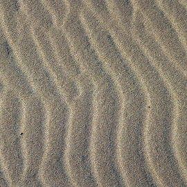 Beach Sand Abstract by Jeff Lowe