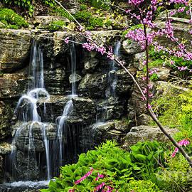 Elena Elisseeva - Cascading waterfall