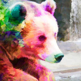EricaMaxine  Price - Bear with Coat of Many Colors