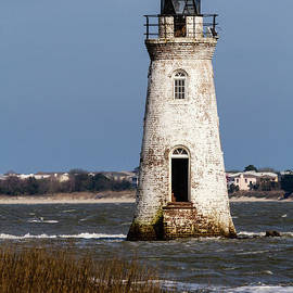 Dawna  Moore Photography - Cockspur Island Lighthouse Savannah River Georgia