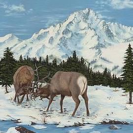 2 Elk Fighting by Paul - Phyllis  Stuart
