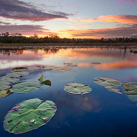 Debra and Dave Vanderlaan - Everglades at Sunset