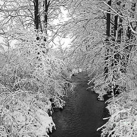 John Stephens - Heavy With Snow