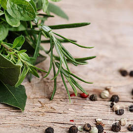 Kitchen Herbs by Nailia Schwarz