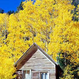La Plata Canyon Cabin by Douglas Taylor