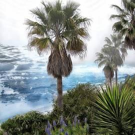 Laguna Beach by Kelly Schutz