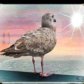 Lookout Sea Gull by Kelly Schutz