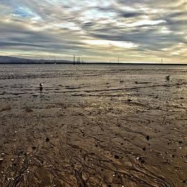 Scott Hill - Low Tide