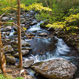 Middle Prong Little River by Walt Sterneman