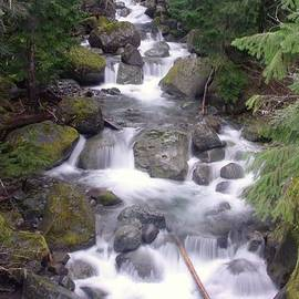Nickle Creek