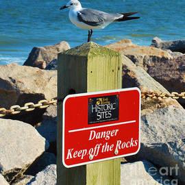 On The Rocks by Bob Sample