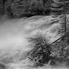 Eunice Gibb - Plaisance Waterfalls