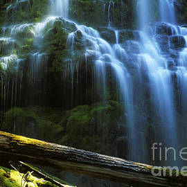 Proxy Falls Oregon by Bob Christopher
