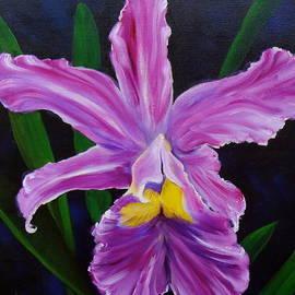 Jenny Lee - Purple Orchid