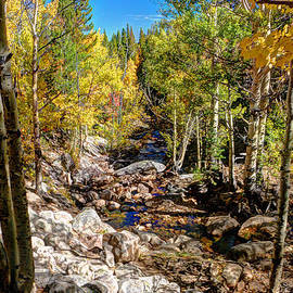 Allen Beatty - Rocky Mountain National Park 5