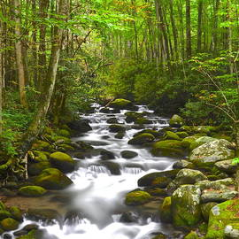 Smoky Mountain Stream by Frozen in Time Fine Art Photography