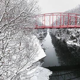 Winter Solitude by Bill Wakeley