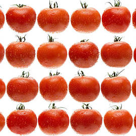 Steve Gadomski - 24 Tomatoes